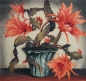 Preview: Hugo Noske, Still Life