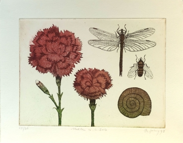 Frydl Prechtl-Zuleeg, Carnations and Dragonfly