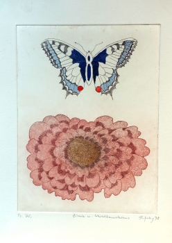 Frydl Prechtl-Zuleeg, Zinnia and Swallowtail