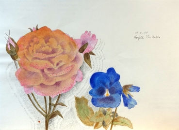 Frydl Prechtl-Zuleeg, Rose and Pansy