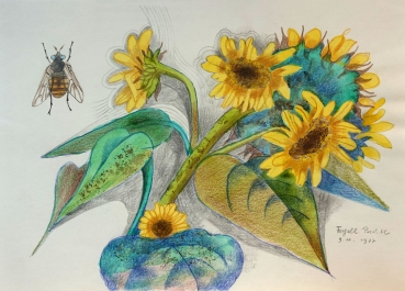 Frydl Prechtl-Zuleeg, Sunflowers and bee